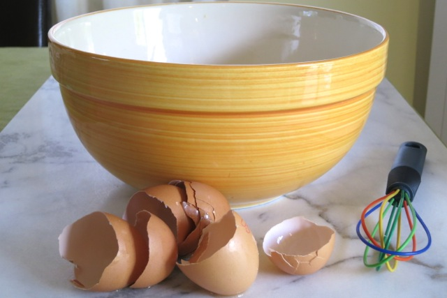 Egg Shells & Whisk