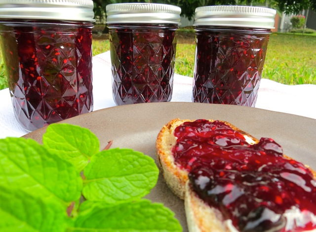 Mixed Berry Jam and Toast