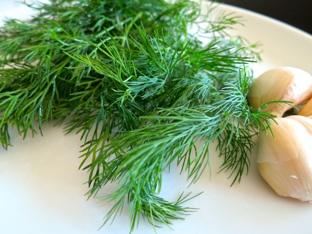 Fresh Dill & Garlic
