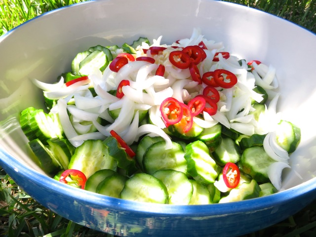 Cucumbers, Onion, Fresno Peppers, Garlic