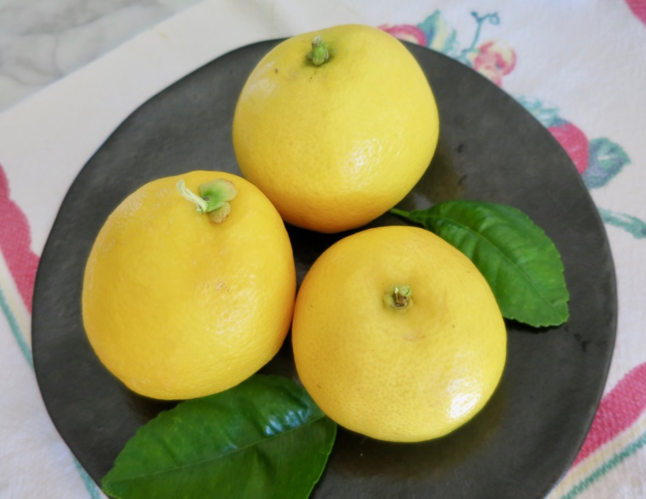 Lemons from the Garden
