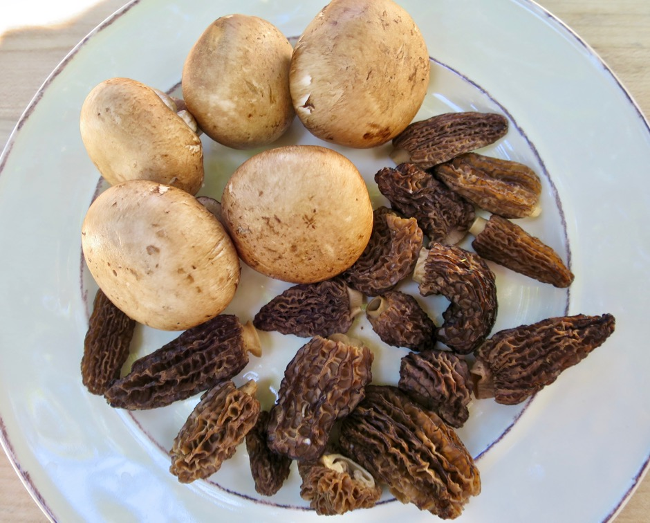 Cremini & Morel Mushrooms
