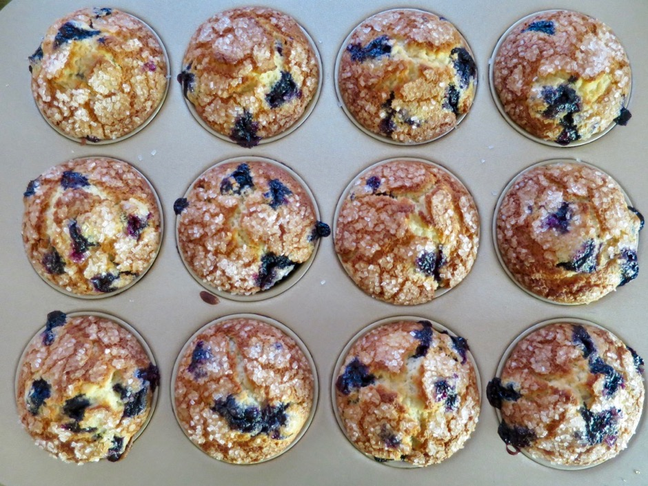Crisp Sugar Topped Blueberry Muffins